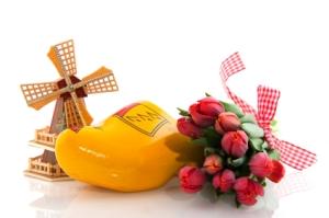 Afbeeldingsresultaat voor tulpen windmolen klompen