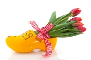 tulpen klompen